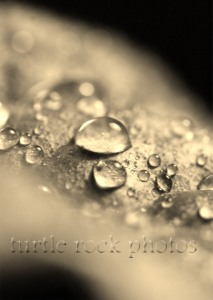 water droplet 2
